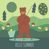 Bear in summer Stock Image