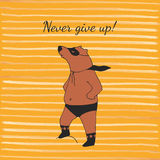 Bear super hero illustration in vector. Royalty Free Stock Image