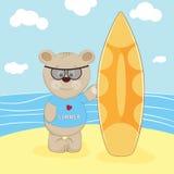 Bear with surfboard in a beach. Stock Photos
