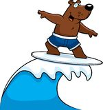 Bear Surfing Stock Photography