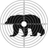 Bear target shooting Royalty Free Stock Photo