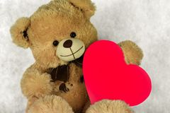 Bear Teddy with a heart loves you. Bear Teddy with a heart love you royalty free stock photos