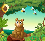 A bear and the three bees in the forest Stock Photos