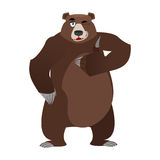 Bear thumbs up and winks. all well Grizzlies. Signs all right. H Stock Photography
