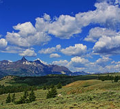 Bear Tooth Mountain cumulus cloudscape in Wyoming USA Royalty Free Stock Images