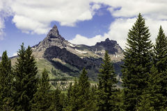 Bear Tooth Mountain Range. Near the Wyoming and Montana boarder with shadows falling on the mountains in the mid-ground and the tops of evergreen trees in the royalty free stock photos