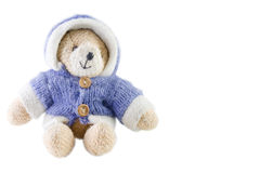 Bear toy with coat Royalty Free Stock Photography