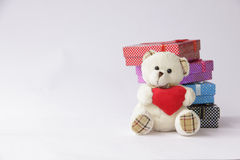 Bear toy with gift box for christmas on white backg Stock Images