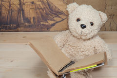 Bear toy holding and reading a book Royalty Free Stock Image