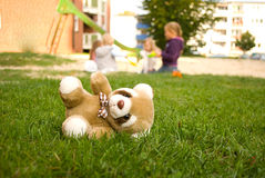 Bear a toy,panda. The bear a toy thrown in the street Stock Photography