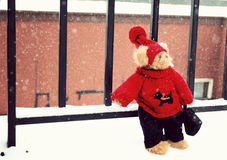 Bear toy in snow balcony Stock Images
