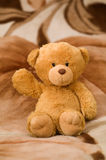 Bear toy is waving by hand. Bear toy sinning on the brown carpet Stock Images
