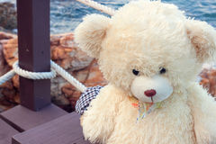 Bear toys,kid toys. Alone Royalty Free Stock Images