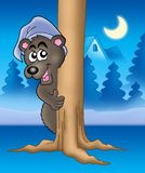 Bear on tree. Color illustration of bear in night cap vector illustration