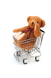 Bear in trolley Royalty Free Stock Photo