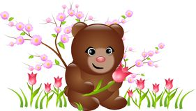 Bear with tulips Royalty Free Stock Photography
