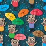 Bear umbrella seamless pattern Stock Image