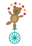 Bear on Unicycle Stock Images