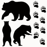 Bear vector Royalty Free Stock Photo