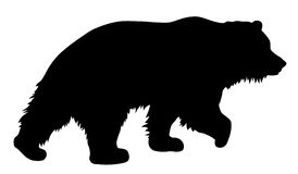 Bear. Vector illustration of brown bear silhouette Royalty Free Stock Photography