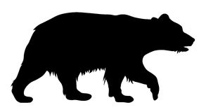 Bear. Vector illustration of brown bear silhouette Stock Photography