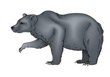 Bear. Vector illustration of Heraldic Bear Royalty Free Stock Images