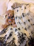 Bear and vintage dress Stock Images