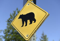 Bear warning sign in the wilderness Royalty Free Stock Images