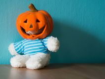 Bear is wear a Halloween pumpkin hat and sitting on the wooden table. the background is blue and copy space for text Stock Photos
