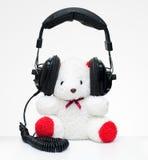 Bear wear headphone royalty free stock photo