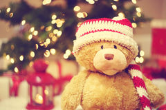 Bear wearing Santa hat with Christmas gift boxes Stock Photos