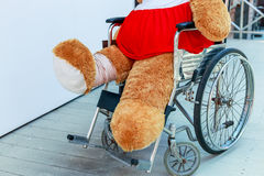 Bear and wheelchair. The wounded bear sitting in a wheelchair Royalty Free Stock Images