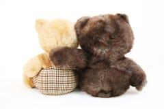 Bear on white bachground. Focus at two brown bears sitting necking Royalty Free Stock Image