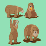 Bear Wild Character Cartoon Set Vector Stock Image