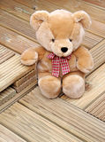 Bear wood...lovely! Royalty Free Stock Photo