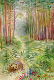 Bear in the woods. Beautiful watercolor Royalty Free Stock Images