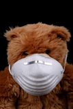 Bearably Sick. Bear with Mask Royalty Free Stock Images