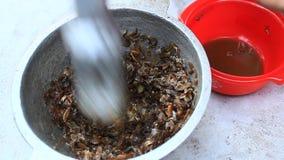 Bearbeta mat från shrim och krabban vid mortel och mortelstöten arkivfilmer