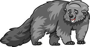 Bearcat animal cartoon illustration Royalty Free Stock Images