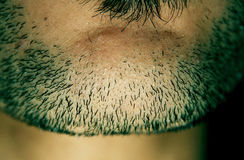Beard. Of an arabian egyptian man Stock Photography