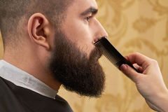 Beard grooming side view. Female hand holding hair comb Stock Images
