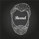Beard 1 Royalty Free Stock Photos