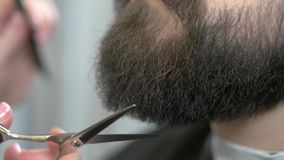 Beard and hand with scissors. stock video