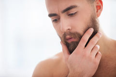 Beard handsome. Royalty Free Stock Photo