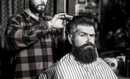 Beard man in barbershop. Hairstylist serving client at barber shop, bearded. Hairdresser, bearded man. Vintage. Beard men in barbershop. Hairstylist serving royalty free stock photos