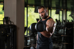 Beard Man Exercise Biceps With Dumbbells Royalty Free Stock Image