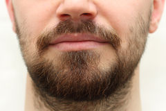 Beard and Mustache. Close up photo of a human male beard and mustache Royalty Free Stock Image
