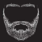 Beard, mustache, eyebrows Royalty Free Stock Photography