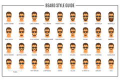 Beard styles guide Royalty Free Stock Image