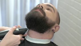 Beard trimming in barber shop. stock footage